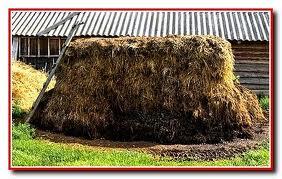биотопливо для теплиц