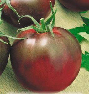 тепличные сорта помидор