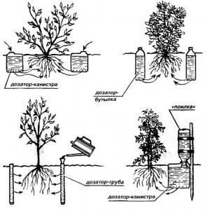 Схема капельного автоматического полива