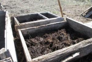 Будущий теплый парник для рассады на биотопливе