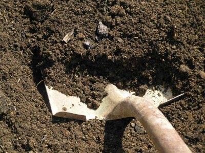 Для замены в парнике полностью снимают слой земли толщиной 20-25 см
