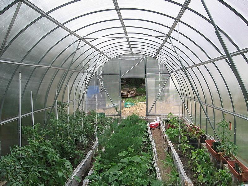 Пример условий для выращивания культур