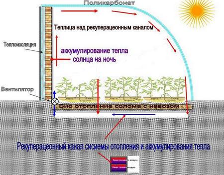Биологическая схема отопления