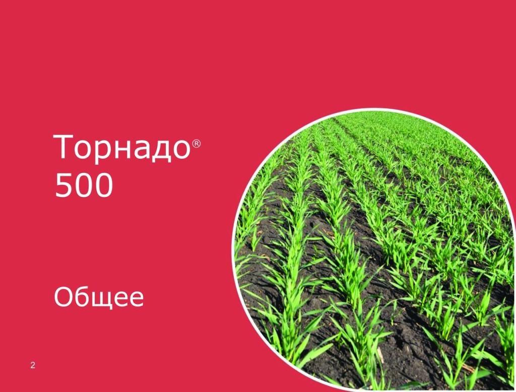 К растению «Торнадо 500 гербицид» попадает через наземную часть