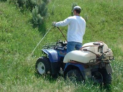 Старайтесь использовать большие распылители. Используется гербицид везде, где обнаружена лишняя трава