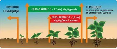 Применяется водный раствор препарата из расчета 1 л гербицида на 1 га почвы