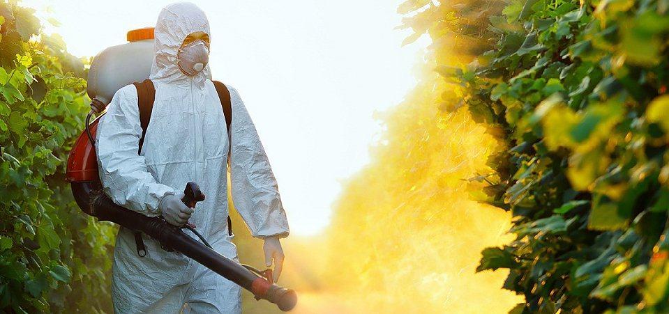 Ввиду той огромной пользы, которую могут оказывать пестициды в сельском хозяйстве, для них нашлось много областей применения
