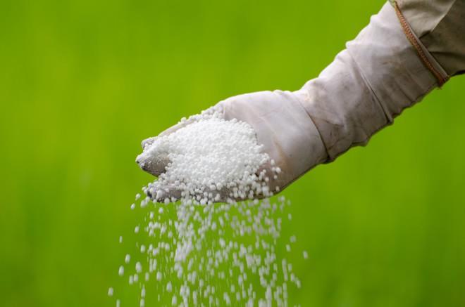 Как попадают пестициды в организм человека и насколько они опасны