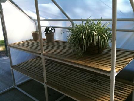 Один из вариантов установки стеллажа в теплице