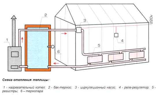 Более совершенным является устройство теплицы зимней с паровым отоплением, особенно если система труб проходит в почве.
