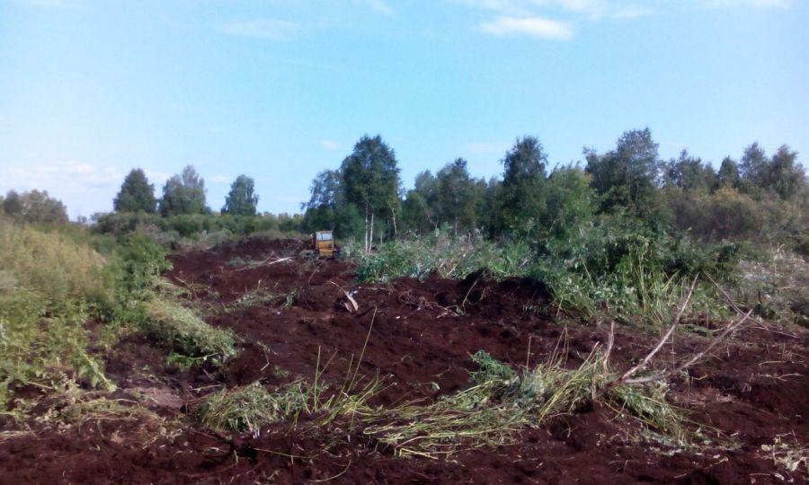 Торфяные земли и их добыча