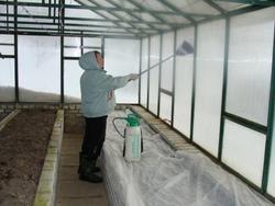 Дезинфекция осенью– важный этап в подготовке теплицы к получению будущих высоких урожаев.