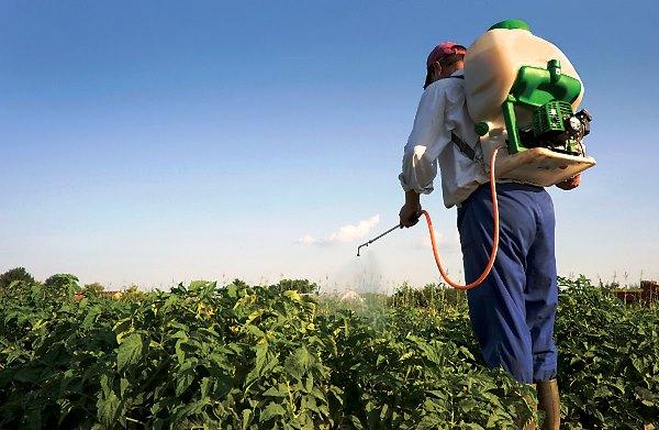 Опрыскиватели при обработке пестицидам и меры предосторожности, фото-материал с примером.