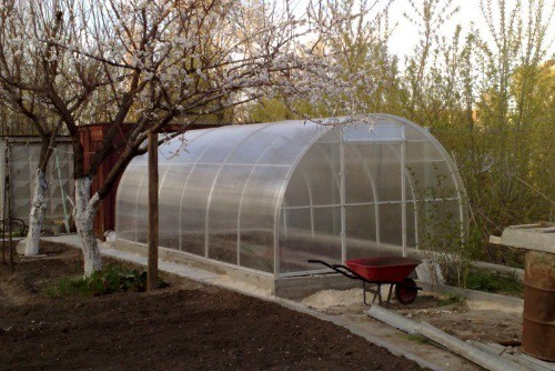 Подготовка теплицы к зиме – одно из важных мероприятий в борьбе за урожай.