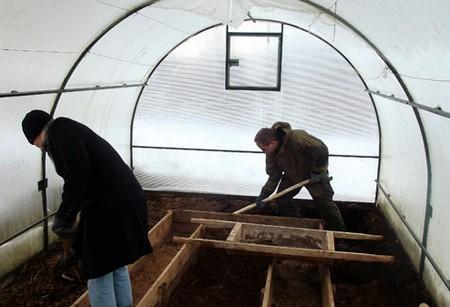 Рекомендуется ежегодно обновлять землю в теплице: осенью снять 7 см старого грунта, а по весне добавить новый.
