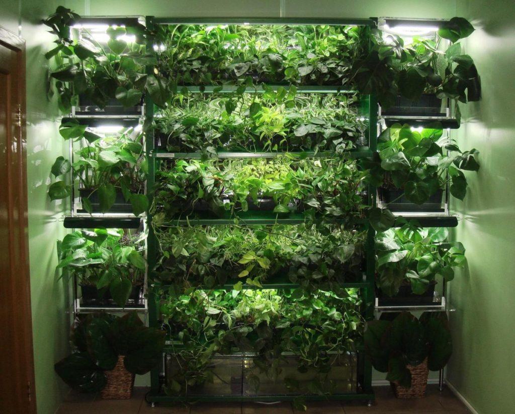 Стеллаж для урожая овощей и фруктов, сделанный своими руками, можно разместить не только в теплице, но и в квартире, гараже или на балконе