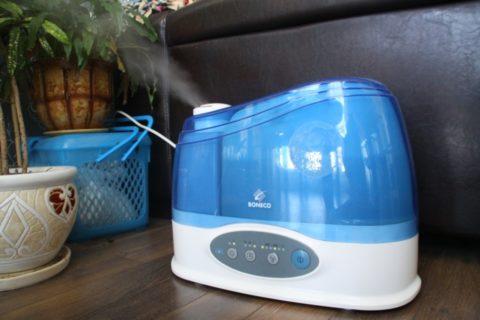 Увлажнитель воздуха поможет вам ухаживать за растением