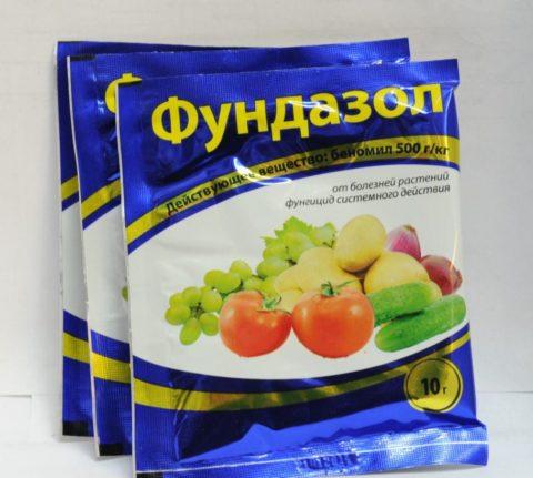 Фунгицид, используемый для профилактики рассады огурца