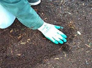 Подготовка грунта в теплице