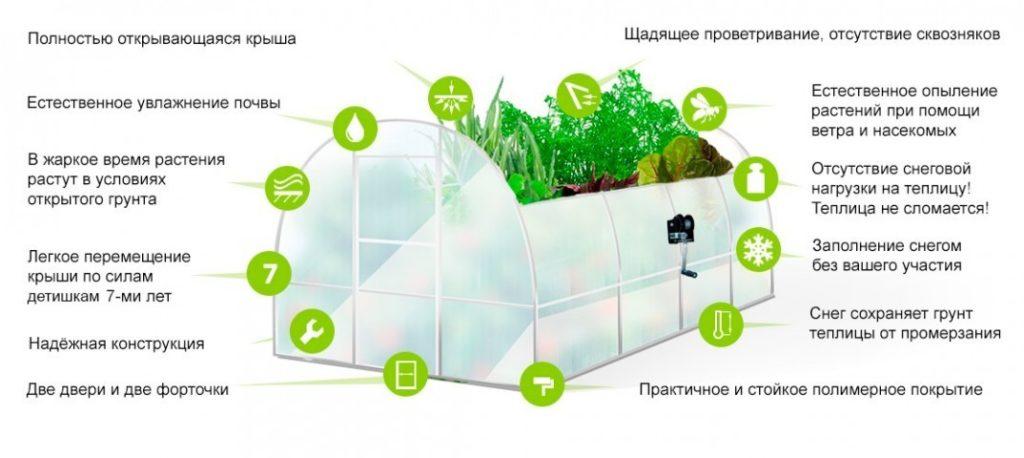 Теплица кормилица умница разработана специально для Сибири, где снежная, морозная зима и жаркое лето.