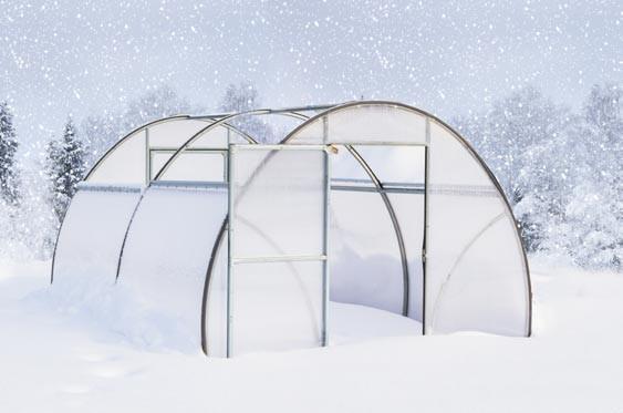 В зимнее время теплица сама заполняется снегом.