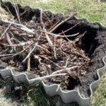 Для начала выбранную землю необходимо перемешать с компостом
