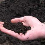 Плодородный грунт с черноземом