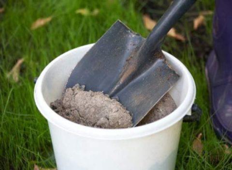 Древесная зола – хорошее удобрение для многолетних флоксов