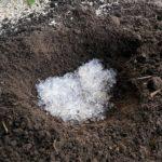 Гидрогель сохранить влажность грунта
