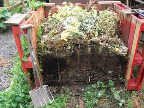 Для приготовления компоста годятся и пищевые отходы