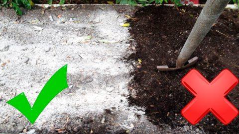 При использовании в качестве удобрения золу тоже заделывают в почву