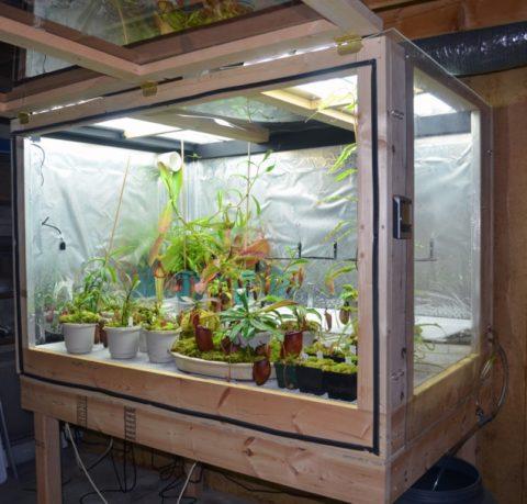 Самодельный гроубокс для хищных растений с подсветкой