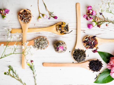 Лекарственные травы могут нести не только пользу, но и вред