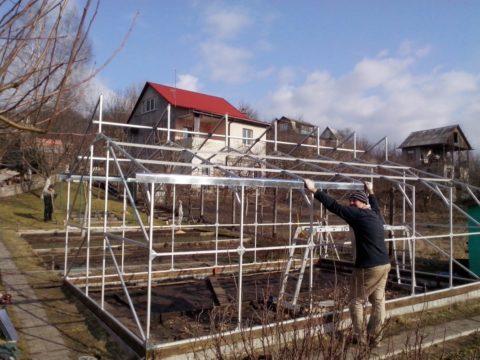 Строительство двух теплиц на дачном участке