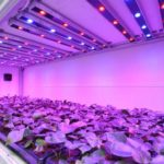 Система подсветки светодиодами